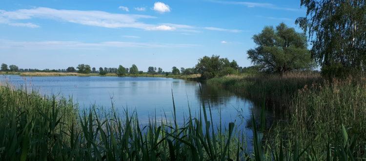 Teichland Linum, Germany